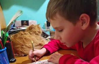 Лікування розлад аутистичного спектру (РАС), алалія (ЗПРР), гіперактивність (СДУГ). Відгуки про лікування, Кирило 10 років, Україна